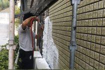 外壁カビ、苔除去作業(サイディング)